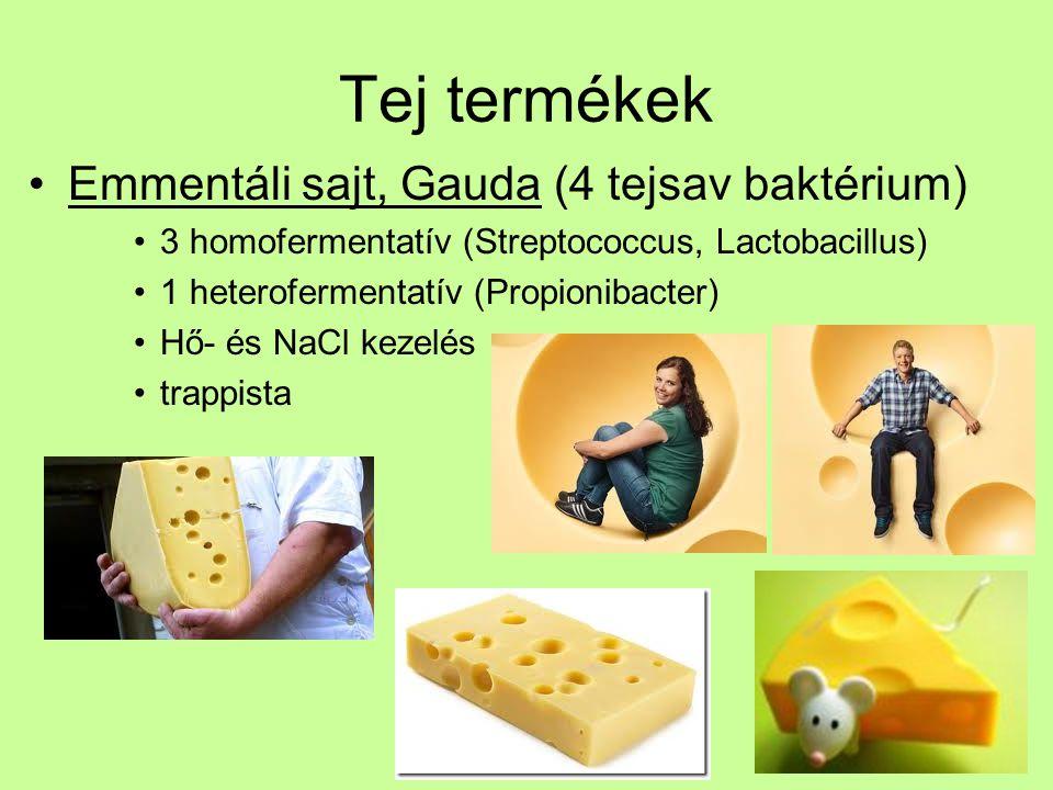 Tej termékek Emmentáli sajt, Gauda (4 tejsav baktérium) 3 homofermentatív (Streptococcus, Lactobacillus) 1 heterofermentatív (Propionibacter) Hő- és N