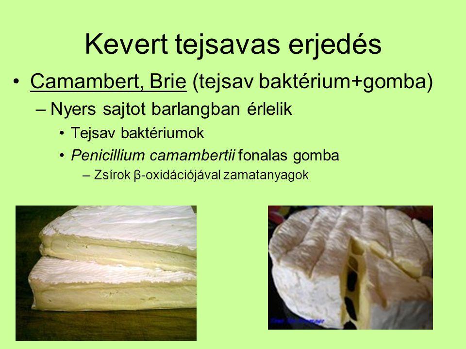 Kevert tejsavas erjedés Camambert, Brie (tejsav baktérium+gomba) –Nyers sajtot barlangban érlelik Tejsav baktériumok Penicillium camambertii fonalas g
