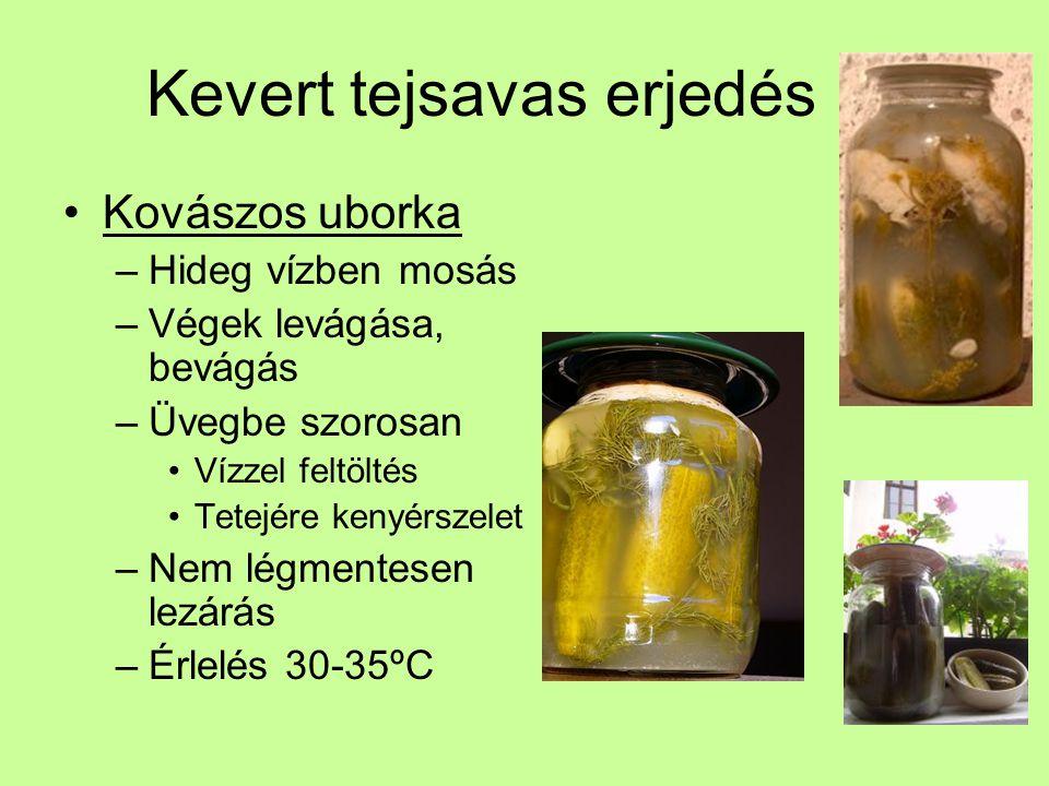 Kevert tejsavas erjedés Kovászos uborka –Hideg vízben mosás –Végek levágása, bevágás –Üvegbe szorosan Vízzel feltöltés Tetejére kenyérszelet –Nem légm