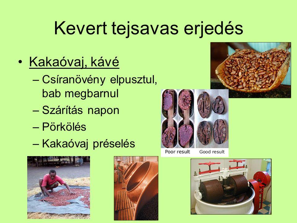 Kevert tejsavas erjedés Kakaóvaj, kávé –Csíranövény elpusztul, bab megbarnul –Szárítás napon –Pörkölés –Kakaóvaj préselés