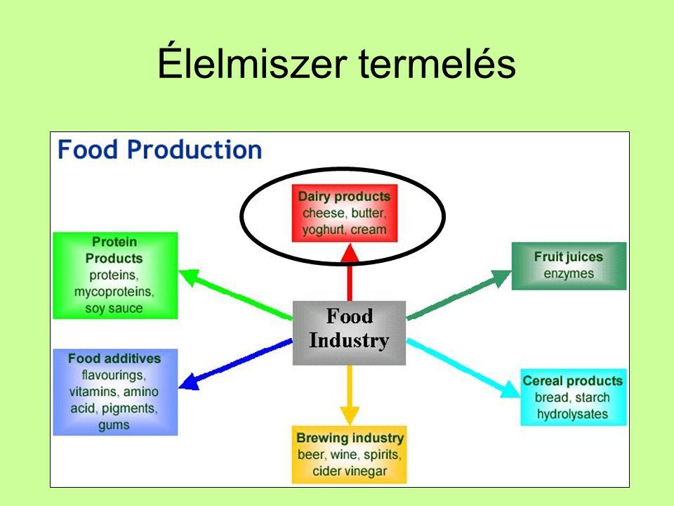 Tej összetétel Összetétel –88% víz –5-6% tejcukor (glükóz- galaktóz diszacharid) Nem olyan édes, mint a répacukor Laktóz intolerancia: laktáz enzim hiány Tejsavas erjedés: laktózból tejsav, ez már emészthető