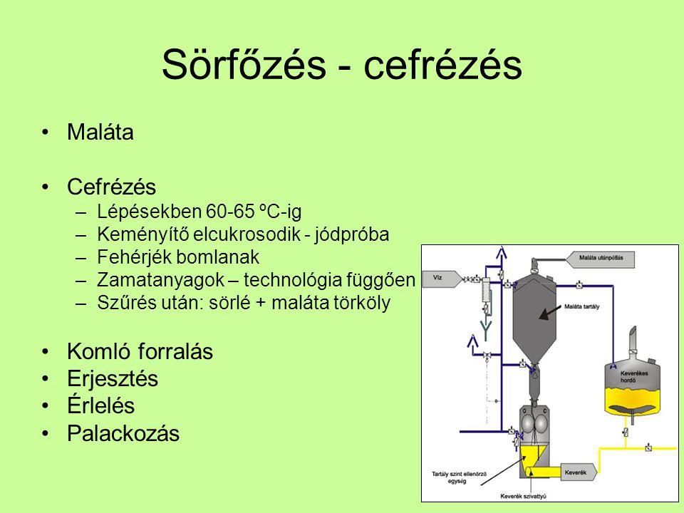 Sörfőzés - cefrézés Maláta Cefrézés –Lépésekben 60-65 ºC-ig –Keményítő elcukrosodik - jódpróba –Fehérjék bomlanak –Zamatanyagok – technológia függően