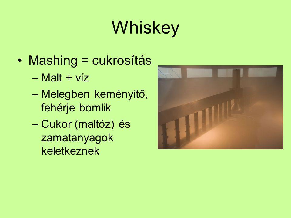 Whiskey Mashing = cukrosítás –Malt + víz –Melegben keményítő, fehérje bomlik –Cukor (maltóz) és zamatanyagok keletkeznek