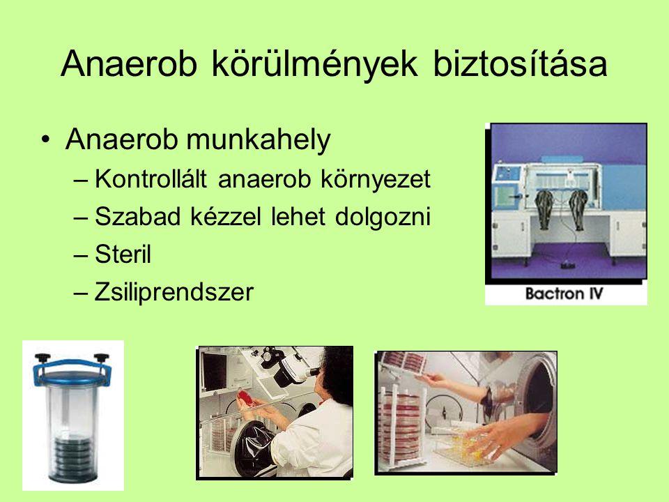 Anaerob munkahely –Kontrollált anaerob környezet –Szabad kézzel lehet dolgozni –Steril –Zsiliprendszer
