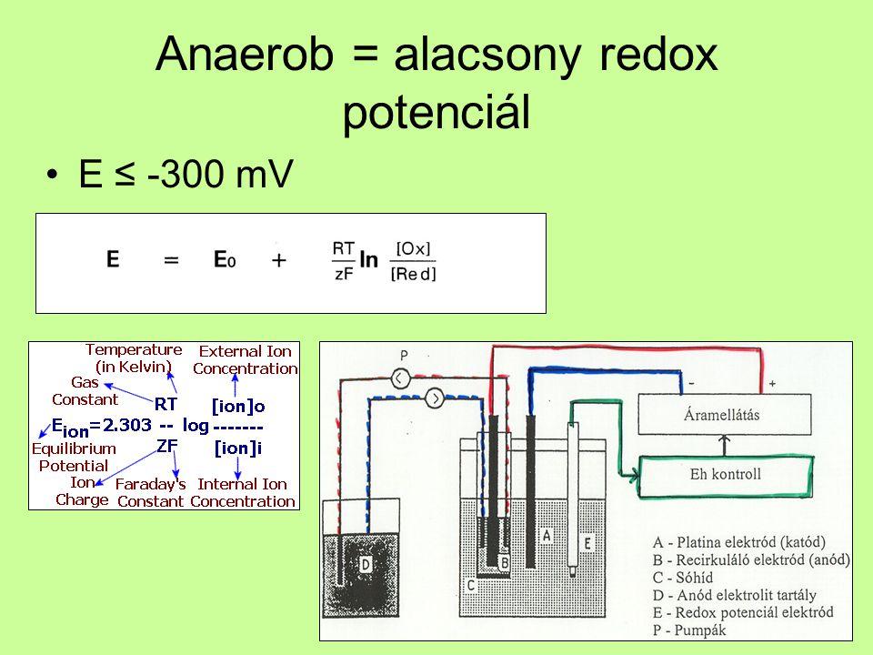 Anaerob = alacsony redox potenciál E ≤ -300 mV