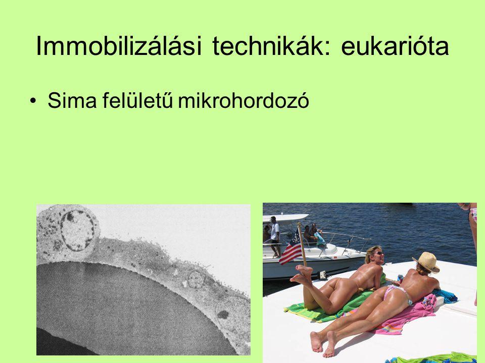 Immobilizálási technikák: eukarióta Sima felületű mikrohordozó