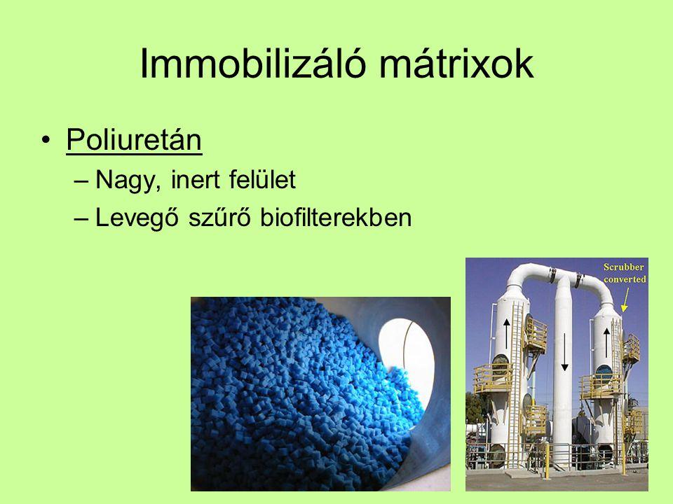 Immobilizáló mátrixok Poliuretán –Nagy, inert felület –Levegő szűrő biofilterekben