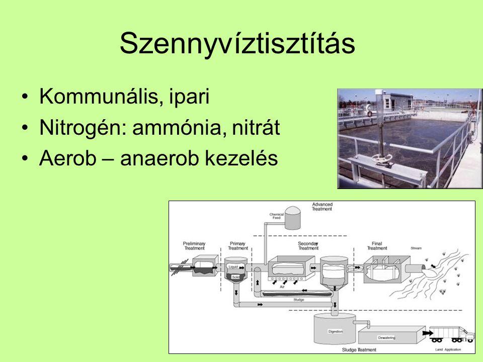 Szennyvíztisztítás Kommunális, ipari Nitrogén: ammónia, nitrát Aerob – anaerob kezelés