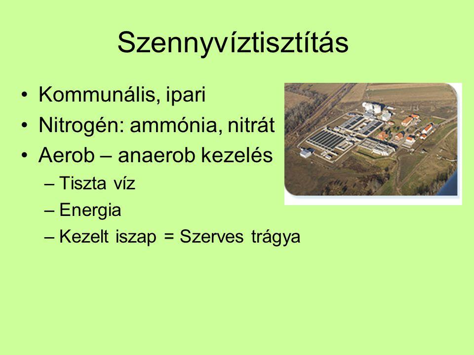 Szennyvíztisztítás Kommunális, ipari Nitrogén: ammónia, nitrát Aerob – anaerob kezelés –Tiszta víz –Energia –Kezelt iszap = Szerves trágya
