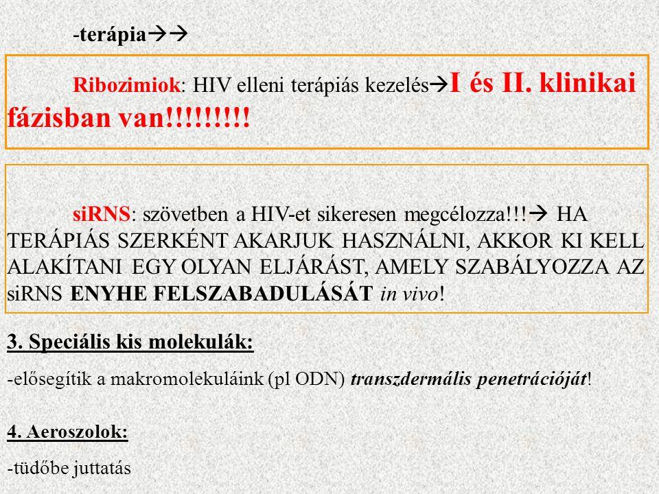 -terápia  Ribozimiok: HIV elleni terápiás kezelés  I és II.