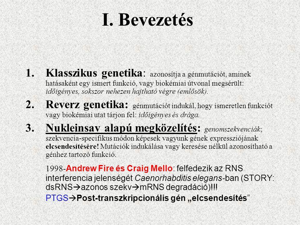 I. Bevezetés 1.Klasszikus genetika: azonosítja a génmutációt, aminek hatásaként egy ismert funkció, vagy biokémiai útvonal megsérült: időigényes, soks