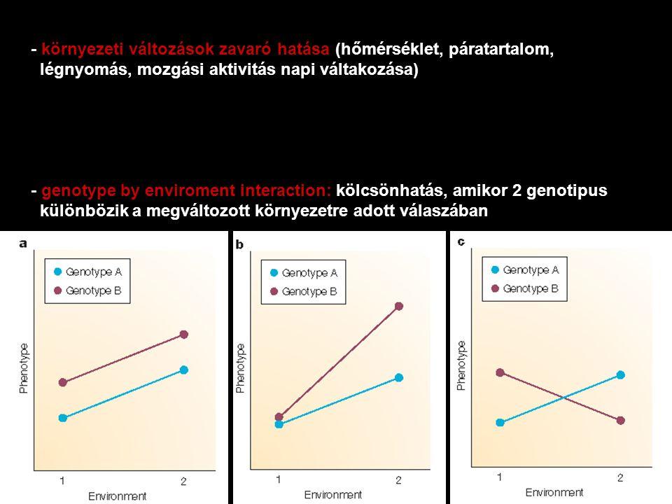 - környezeti változások zavaró hatása (hőmérséklet, páratartalom, légnyomás, mozgási aktivitás napi váltakozása) - genotype by enviroment interaction:
