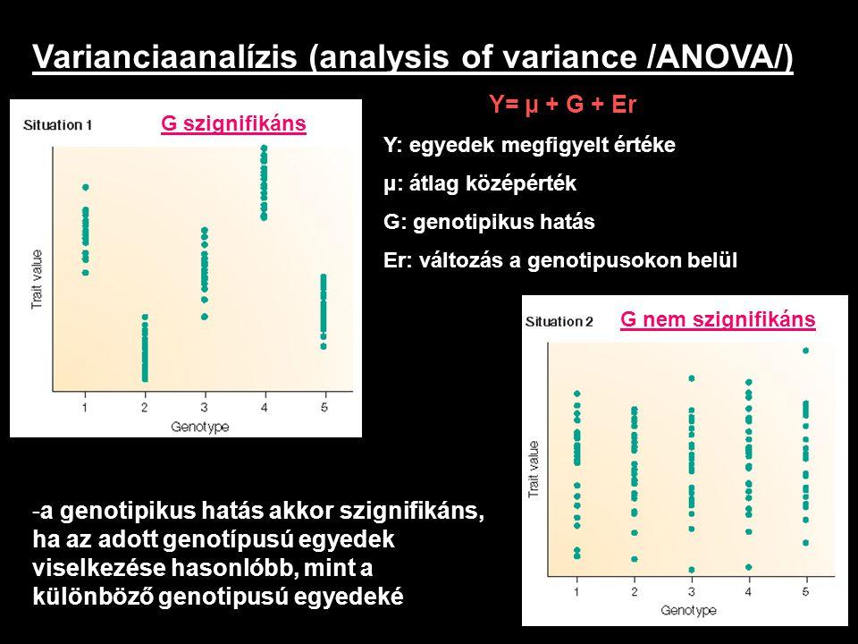 Varianciaanalízis (analysis of variance /ANOVA/) Y= μ + G + Er Y: egyedek megfigyelt értéke μ: átlag középérték G: genotipikus hatás Er: változás a ge