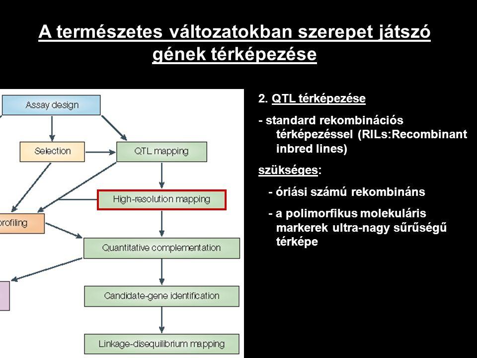 A természetes változatokban szerepet játszó gének térképezése 2. QTL térképezése - standard rekombinációs térképezéssel (RILs:Recombinant inbred lines