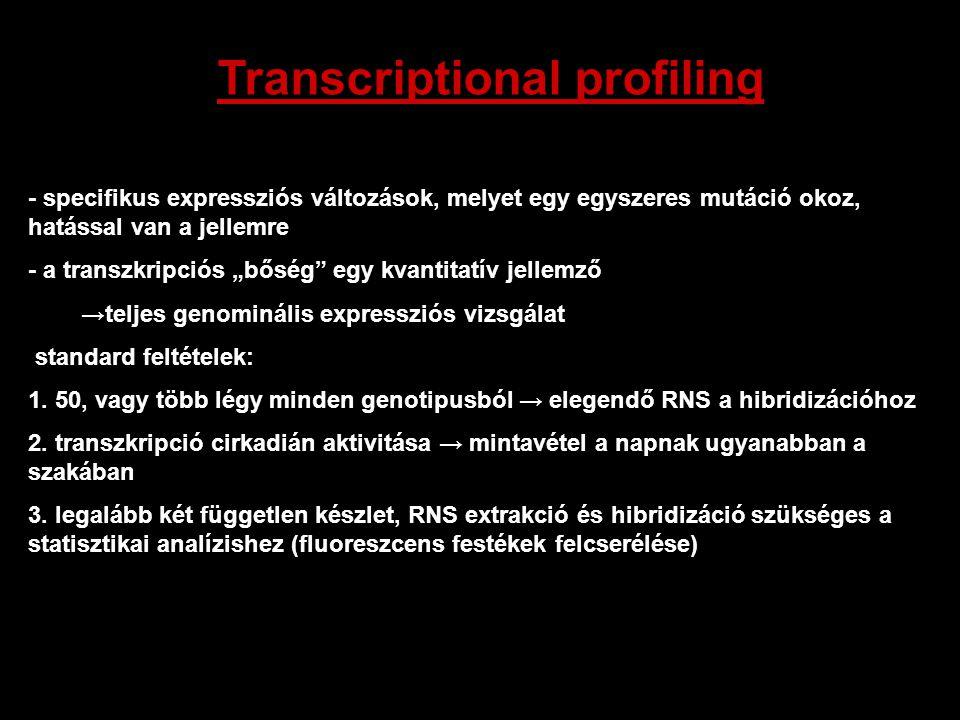 """- specifikus expressziós változások, melyet egy egyszeres mutáció okoz, hatással van a jellemre - a transzkripciós """"bőség"""" egy kvantitatív jellemző →t"""