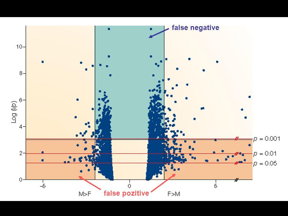 false negative false pozitive