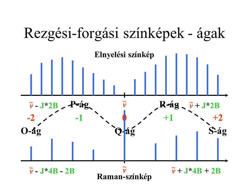 Rezgési-forgási színképek - ágak P-ágR-ág v + J*2B ~ v - J*2B ~ v + J*4B + 2B ~ v - J*4B - 2B ~ O-ágS-ág Q-ág v ~ Elnyelési színkép v ~ Raman-színkép