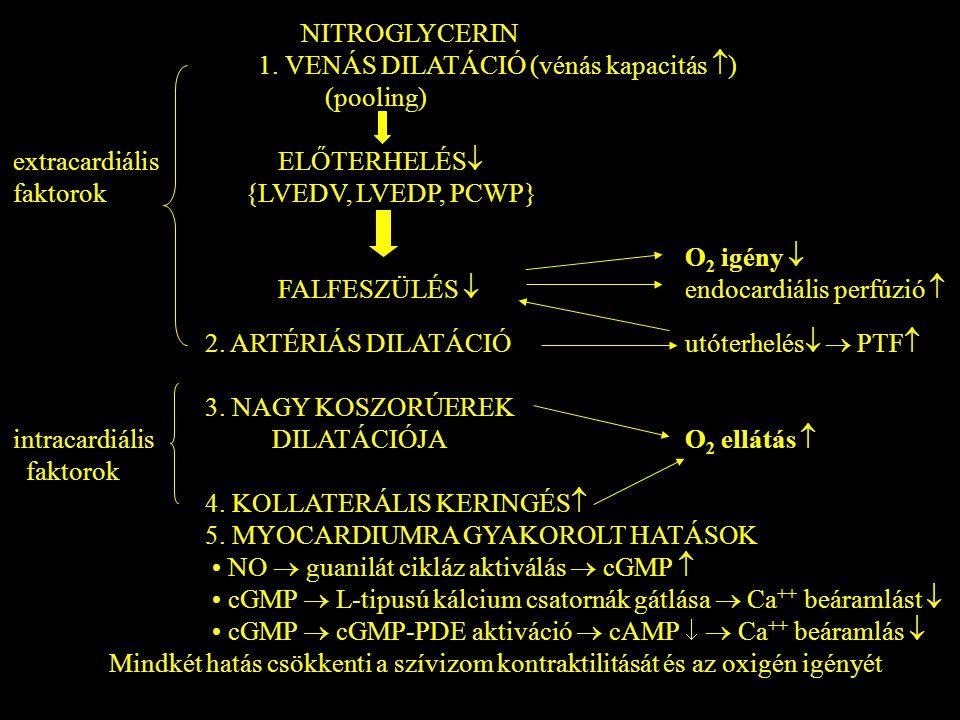 NITROGLYCERIN 1. VENÁS DILATÁCIÓ (vénás kapacitás  ) (pooling) extracardiális ELŐTERHELÉS  faktorok {LVEDV, LVEDP, PCWP} O 2 igény  FALFESZÜLÉS  e