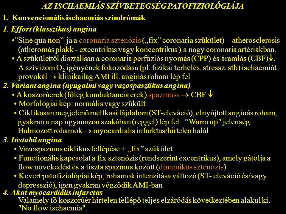 """AZ ISCHAEMIÁS SZÍVBETEGSÉG PATOFIZIOLÓGIÁJA I. Konvencionális ischaemiás szindrómák 1. Effort (klasszikus) angina """"Sine qua non""""-ja a coronaria sztenó"""