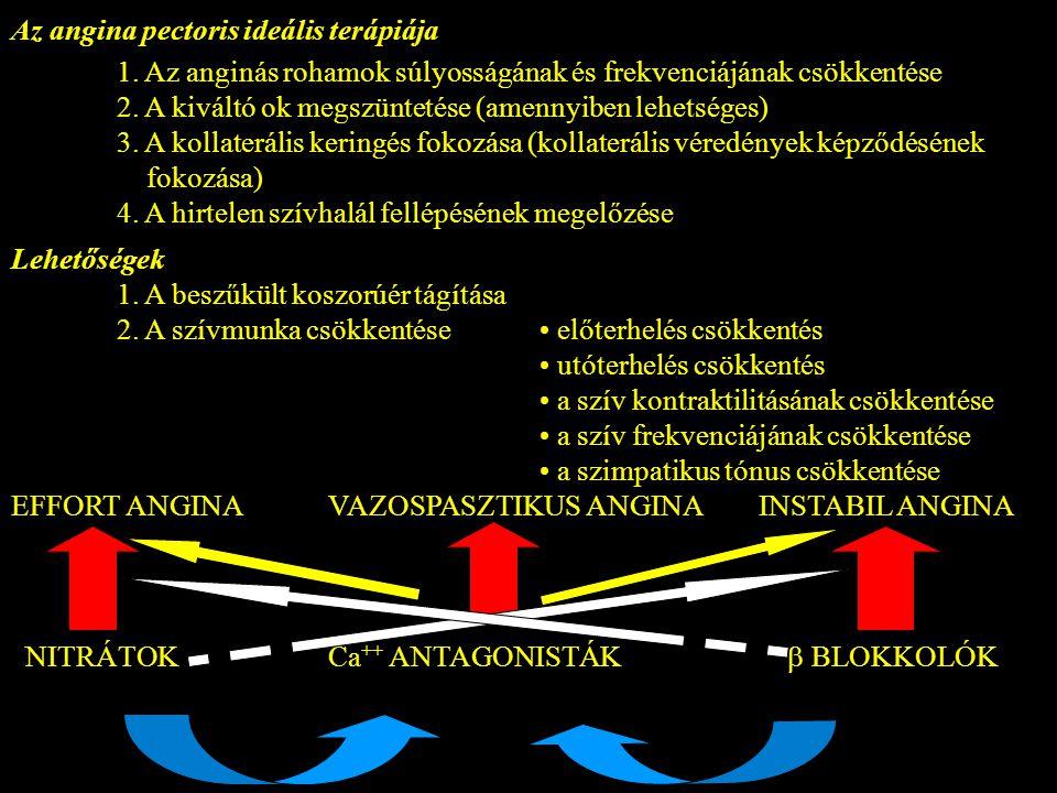 Az angina pectoris ideális terápiája 1. Az anginás rohamok súlyosságának és frekvenciájának csökkentése 2. A kiváltó ok megszüntetése (amennyiben lehe