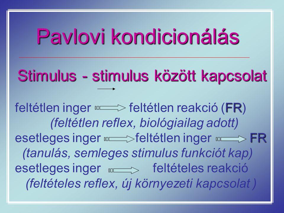 Pavlovi kondicionálás Stimulus - stimulus között kapcsolat FR feltétlen inger feltétlen reakció (FR) (feltétlen reflex, biológiailag adott) FR esetleg
