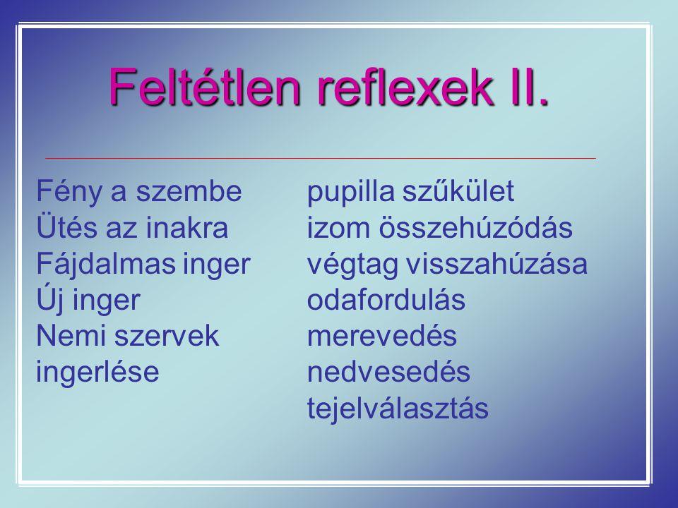 Feltétlen reflexek II. Fény a szembepupilla szűkület Ütés az inakraizom összehúzódás Fájdalmas ingervégtag visszahúzása Új ingerodafordulás Nemi szerv
