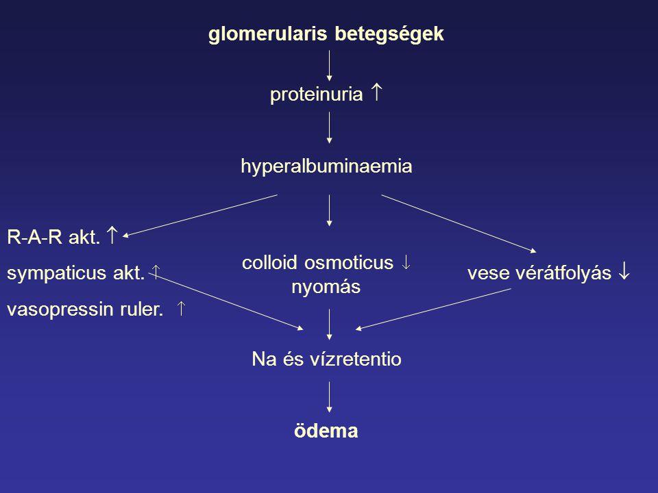 glomerularis betegségek proteinuria  hyperalbuminaemia colloid osmoticus  nyomás Na és vízretentio ödema R-A-R akt.  sympaticus akt.  vese vérátfo