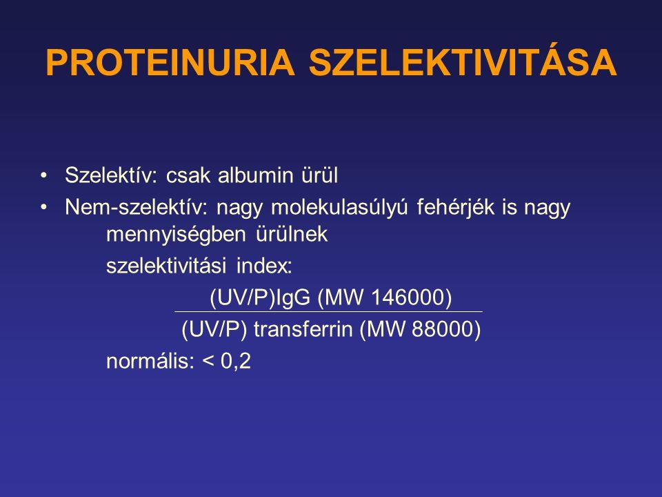 PROTEINURIA SZELEKTIVITÁSA Szelektív: csak albumin ürül Nem-szelektív: nagy molekulasúlyú fehérjék is nagy mennyiségben ürülnek szelektivitási index: