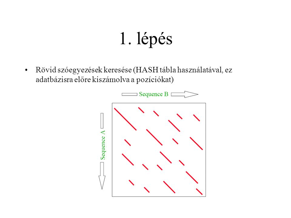 1. lépés Rövid szóegyezések keresése (HASH tábla használatával, ez adatbázisra előre kiszámolva a pozíciókat)