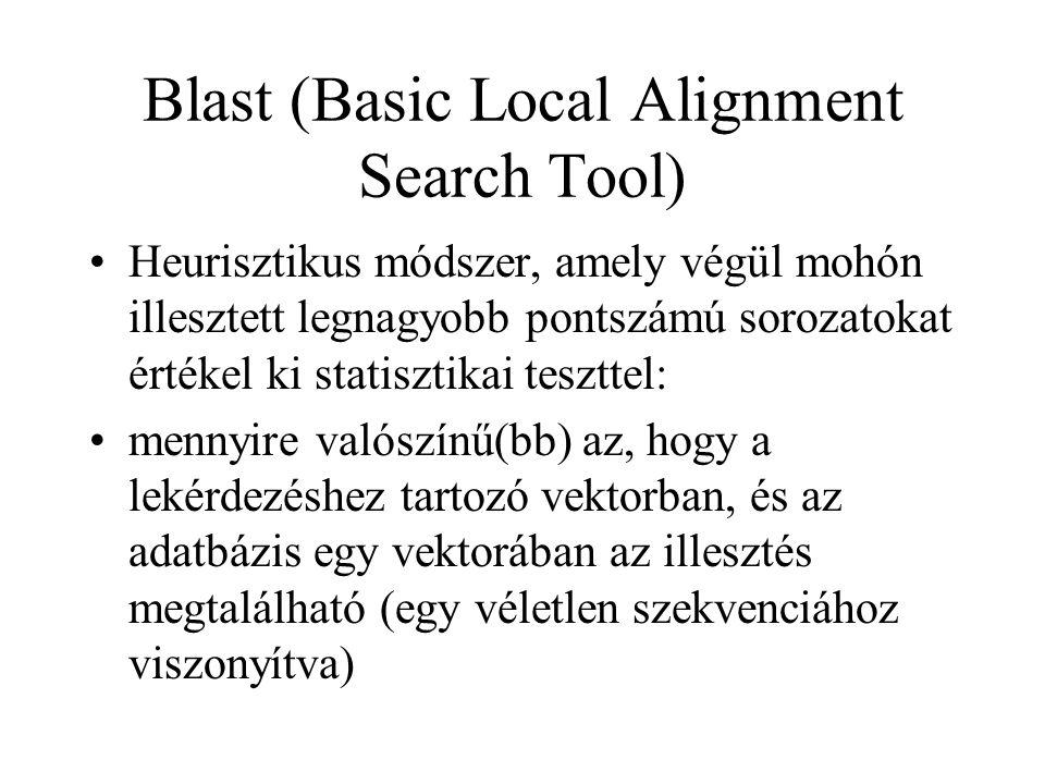 Blast (Basic Local Alignment Search Tool) Heurisztikus módszer, amely végül mohón illesztett legnagyobb pontszámú sorozatokat értékel ki statisztikai