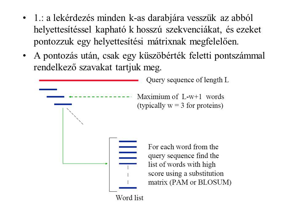 1.: a lekérdezés minden k-as darabjára vesszük az abból helyettesítéssel kapható k hosszú szekvenciákat, és ezeket pontozzuk egy helyettesítési mátrix