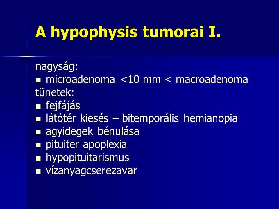 A hypophysis tumorai I. nagyság: microadenoma <10 mm < macroadenoma microadenoma <10 mm < macroadenomatünetek: fejfájás fejfájás látótér kiesés – bite