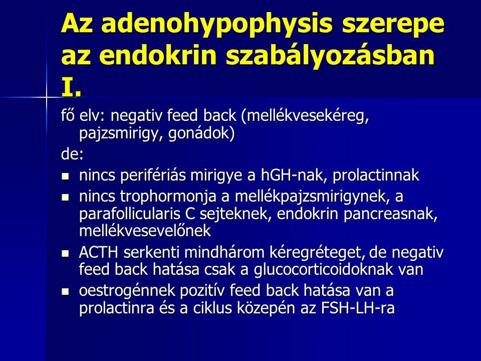 Az adenohypophysis szerepe az endokrin szabályozásban I. fő elv: negativ feed back (mellékvesekéreg, pajzsmirigy, gonádok) de: nincs perifériás mirigy