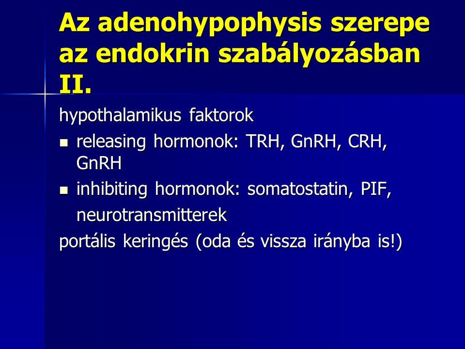 Az adenohypophysis szerepe az endokrin szabályozásban II. hypothalamikus faktorok releasing hormonok: TRH, GnRH, CRH, GnRH releasing hormonok: TRH, Gn