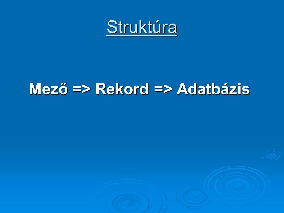 Struktúra Mező => Rekord => Adatbázis