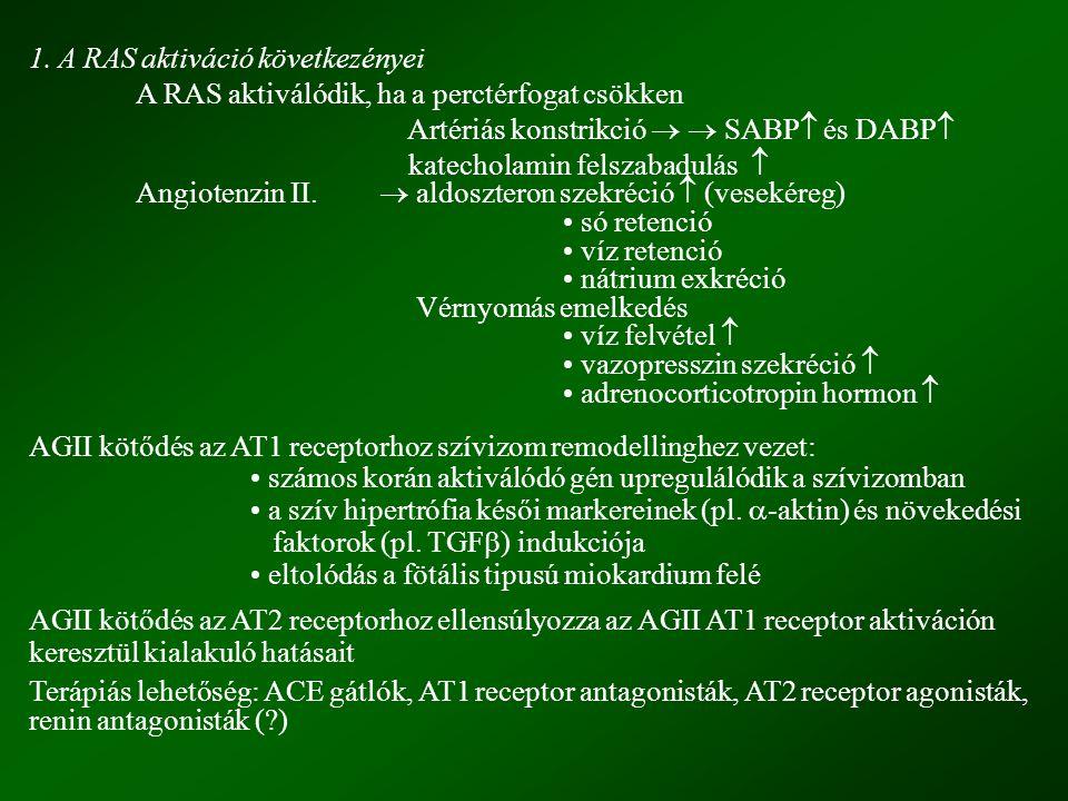 1. A RAS aktiváció következényei A RAS aktiválódik, ha a perctérfogat csökken Artériás konstrikció   SABP   és DABP  katecholamin felszabadulás 