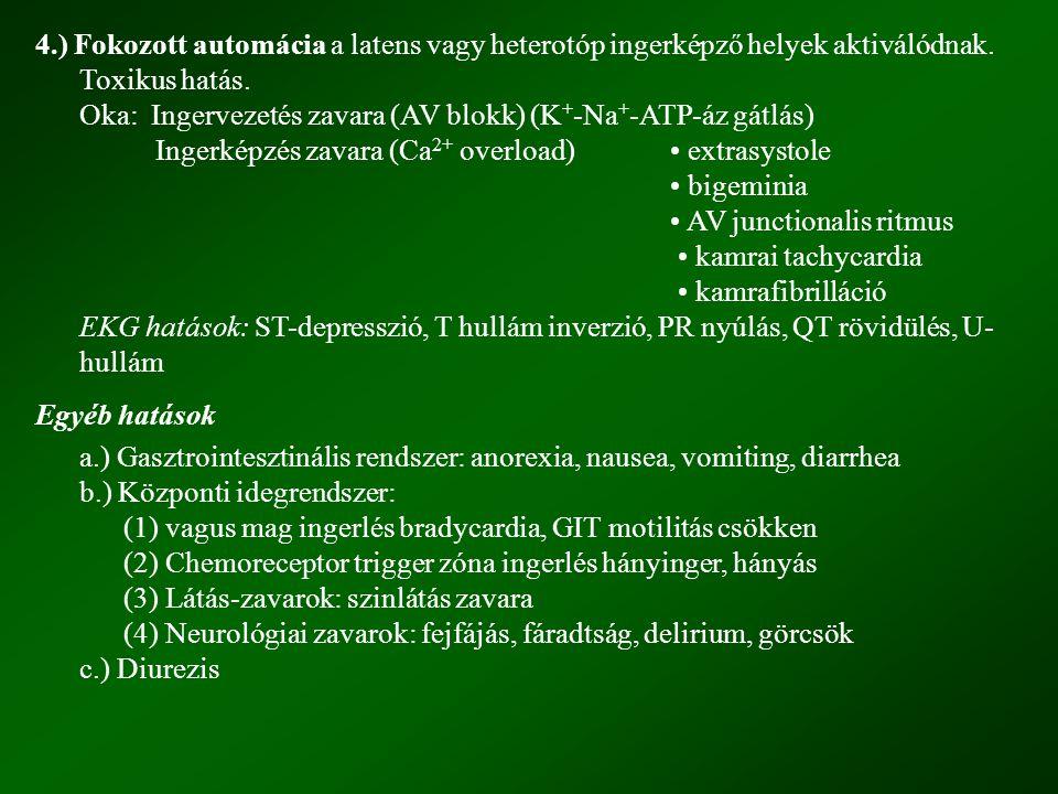 4.) Fokozott automácia a latens vagy heterotóp ingerképző helyek aktiválódnak. Toxikus hatás. Oka: Ingervezetés zavara (AV blokk) (K + -Na + -ATP-áz g