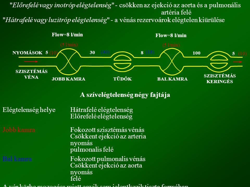 Előrefelé vagy inotróp elégtelenség - csökken az ejekció az aorta és a pulmonális artéria felé Hátrafelé vagy luzitróp elégtelenség - a vénás rezervoárok elégtelen kiürülése A szívelégtelenség négy fajtája Elégtelenség helyeHátrafelé elégtelenség Előrefelé elégtelenség Jobb kamraFokozott szisztémás vénás Csökkent ejekció az arteria nyomás pulmonalis felé Bal kamraFokozott pulmonalis vénás Csökkent ejekció az aorta nyomás felé A vér körbe mozogása miatt egyik sem jelentkezik tiszta formában.
