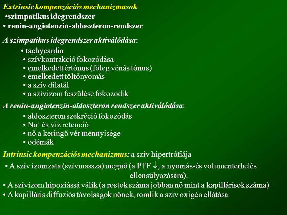 Digitalis toxicitás Kis terápiás szélesség A mérgezés oka: kálcium túlsúly (overload), kálium hiány Toxikus jelek: Kardiális: extrém bradycardia, ritmus zavarok, AV blokk Egyéb: anorexia, gyengeség, hányinger, hányás, neuralgia, látászavar Kezelése: Digitalis adás azonnali felfüggesztése Ca 2+ megkötése, K + pótlás Arrhythmiák kezelése: DIPHEDAN (Epanutin), LIDOCAIN, PROCAINAMID Extrém bradycardia, sinus bénulás, II és III fokú AV blokk esetén, ATROPIN Klinikai tapasztalatok Hasznos, de gyenge inotróp szerek, kicsi terápiás index-szel és szélességgel.