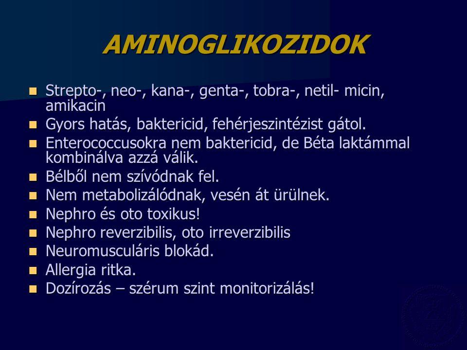 AMINOGLIKOZIDOK Strepto-, neo-, kana-, genta-, tobra-, netil- micin, amikacin Strepto-, neo-, kana-, genta-, tobra-, netil- micin, amikacin Gyors hatá