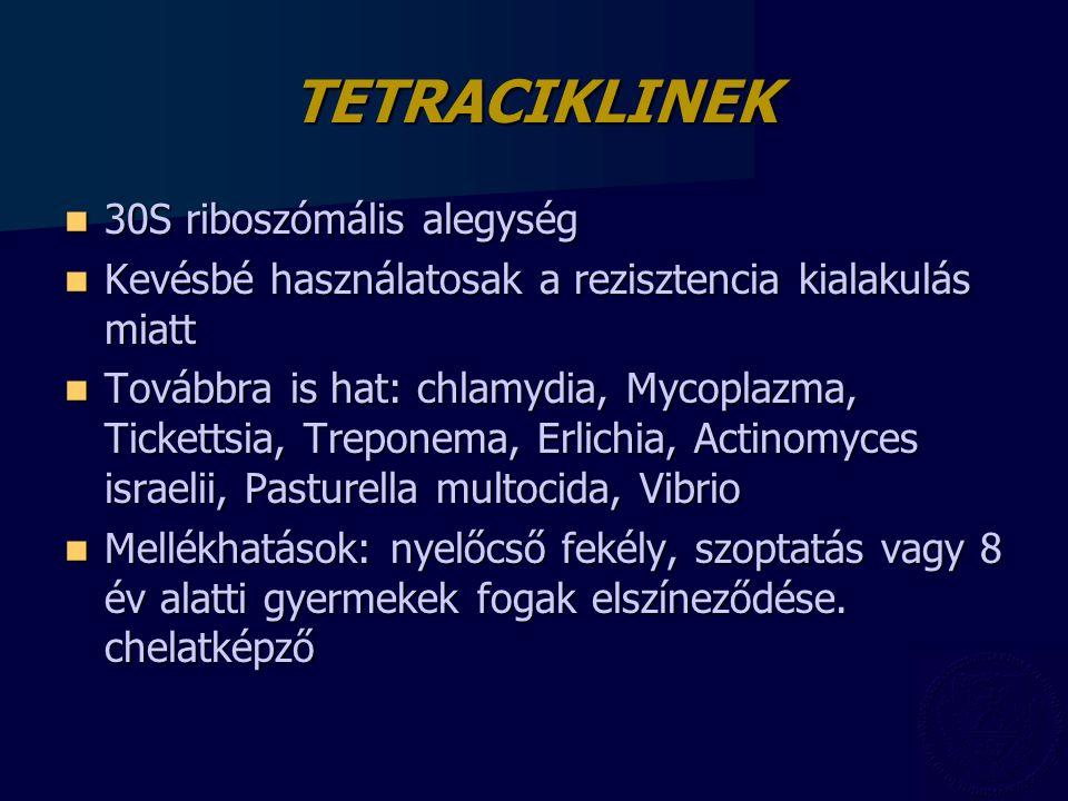 TETRACIKLINEK 30S riboszómális alegység 30S riboszómális alegység Kevésbé használatosak a rezisztencia kialakulás miatt Kevésbé használatosak a rezisz