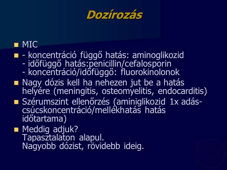 Dozírozás MIC MIC - koncentráció függő hatás: aminoglikozid - időfüggő hatás:penicillin/cefalosporin - koncentráció/időfüggő: fluorokinolonok - koncen