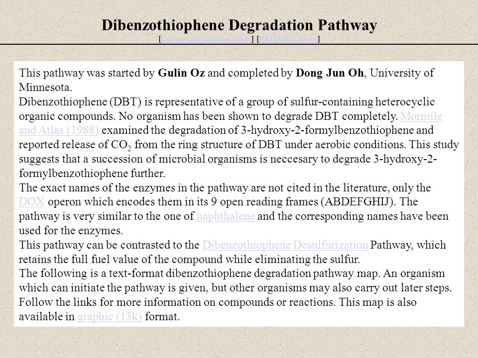 Dibenzothiophene Degradation Pathway [Compounds and Reactions] [BBD Main Menu]Compounds and ReactionsBBD Main Menu This pathway was started by Gulin O