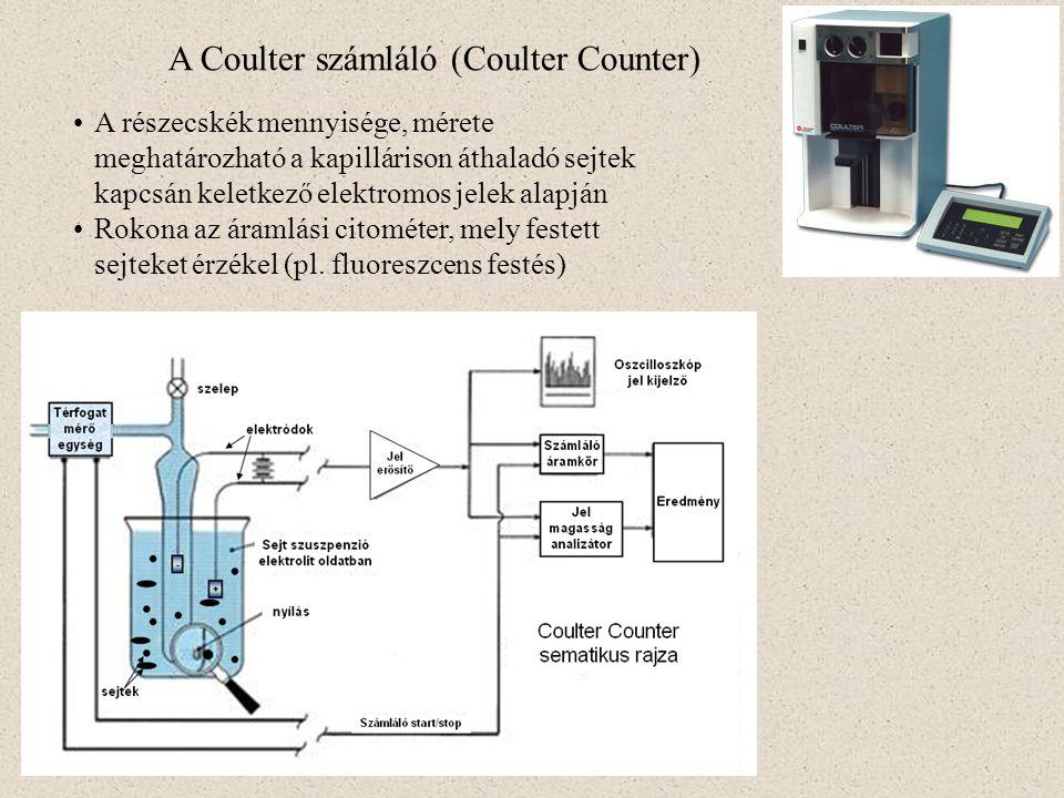 A Coulter számláló (Coulter Counter) A részecskék mennyisége, mérete meghatározható a kapillárison áthaladó sejtek kapcsán keletkező elektromos jelek