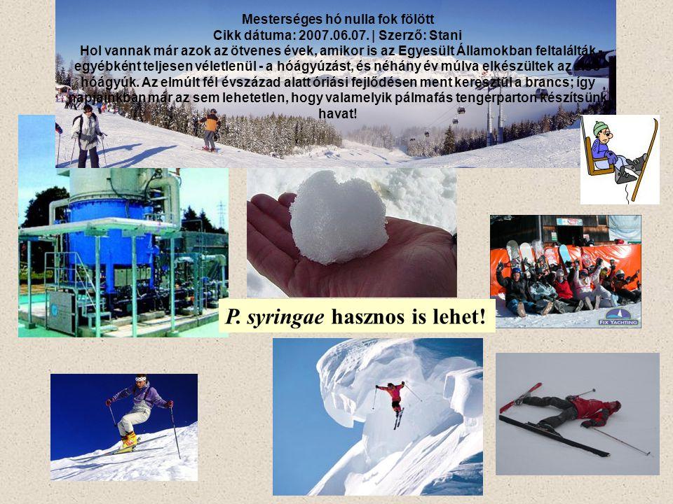 Mesterséges hó nulla fok fölött Cikk dátuma: 2007.06.07. | Szerző: Stani Hol vannak már azok az ötvenes évek, amikor is az Egyesült Államokban feltalá