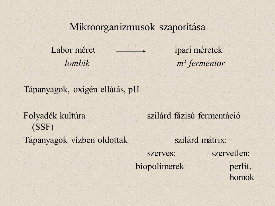 Mikroorganizmusok szaporítása Labor méretipari méretek lombik m 3 fermentor Tápanyagok, oxigén ellátás, pH Folyadék kultúra szilárd fázisú fermentáció