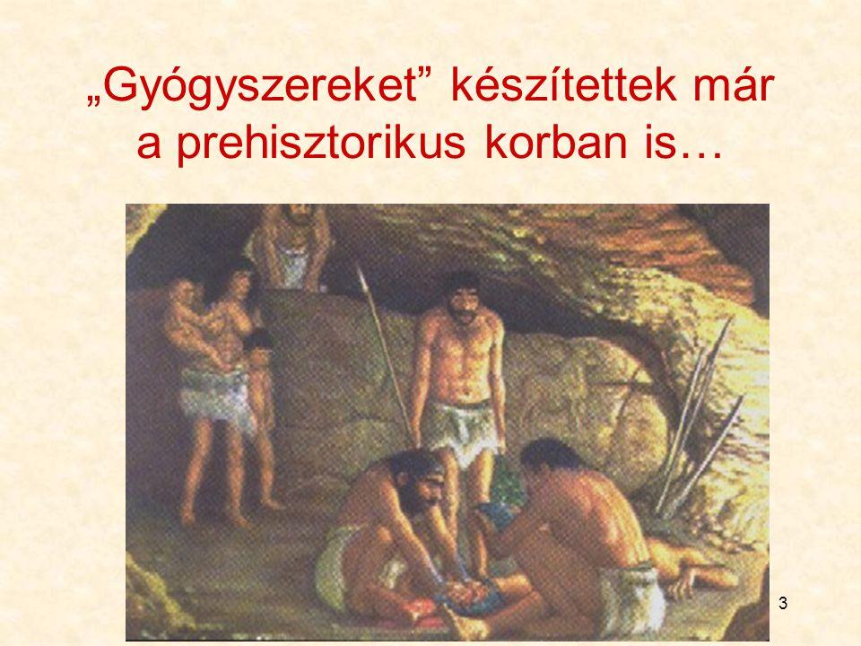 """3 """"Gyógyszereket"""" készítettek már a prehisztorikus korban is…"""