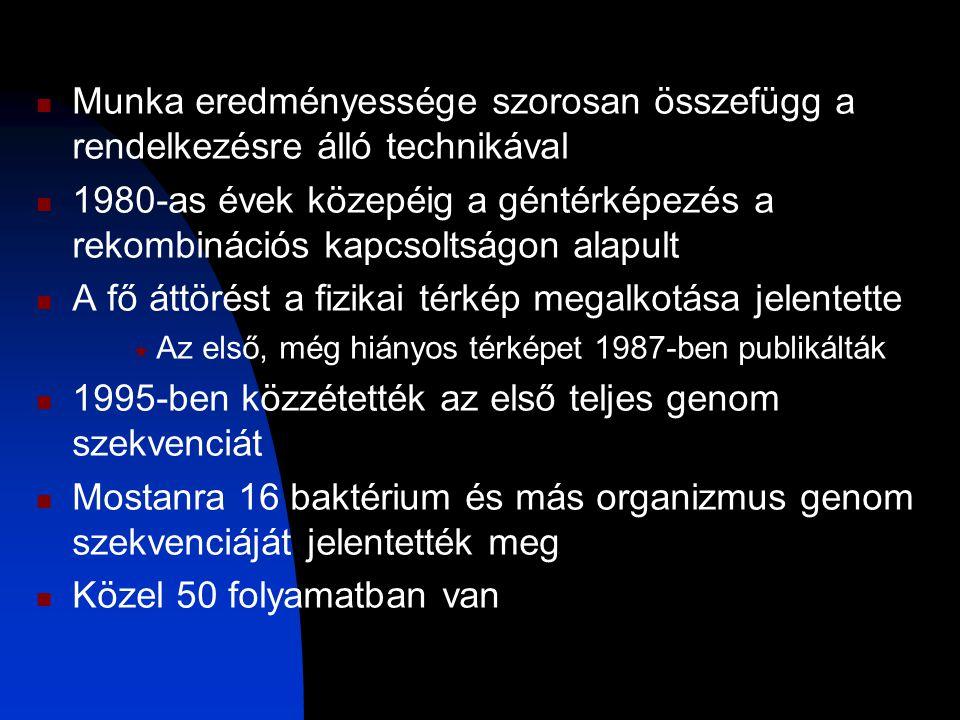 A rendezett klón DNS könyvtár v.