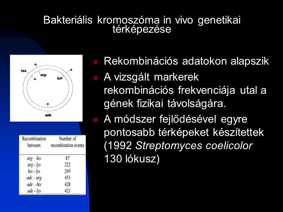Bakteriális kromoszóma in vivo genetikai térképezése Rekombinációs adatokon alapszik A vizsgált markerek rekombinációs frekvenciája utal a gének fizikai távolságára.