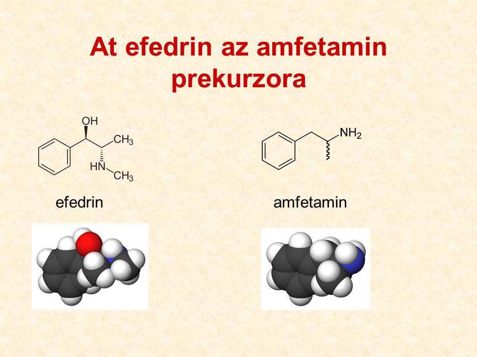 At efedrin az amfetamin prekurzora efedrinamfetamin